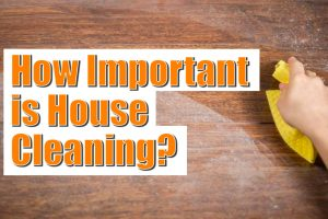 How Important is House Cleaning?