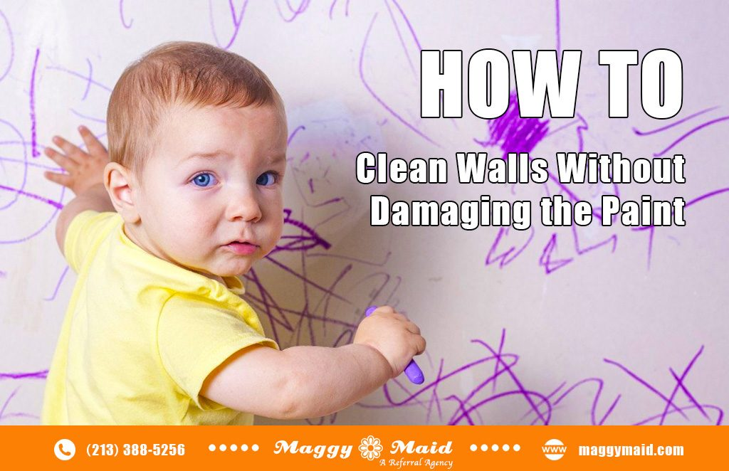 Cleaning Guide How To Clean Walls Without Damaging The Paint