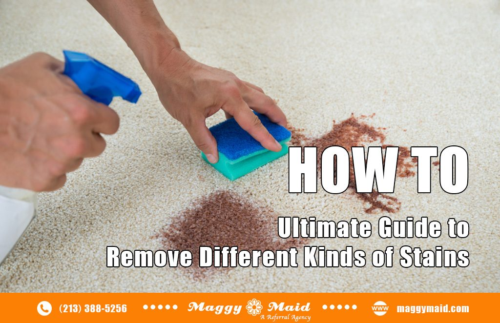 Ultimate Guide on How to Remove Different Kinds of Stains