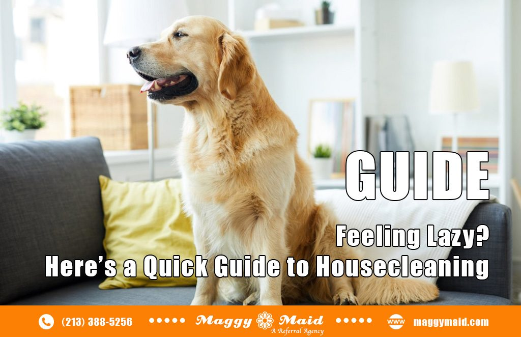 Feeling lazy? A complete guide to housecleaning or home cleaning