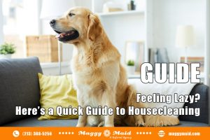 Feeling Lazy? Here's a Quick Guide to Housecleaning
