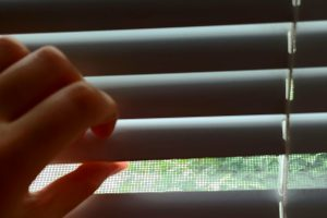 The Most Excellent Means to Clean Your Blinds